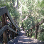 Top of the Casuarina Steps (43333)