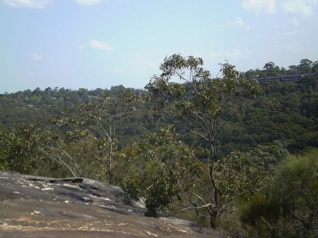Views along the Natural Bridge Track