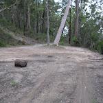 Car turning area