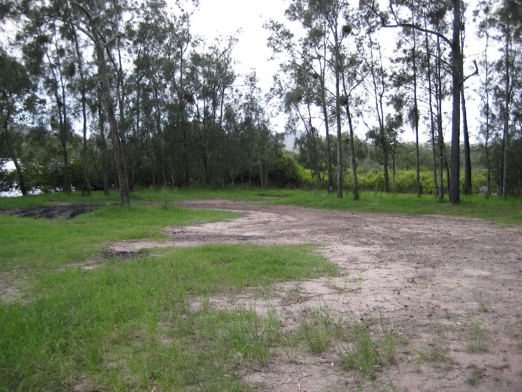 Clearing at Tattersals campground