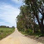 Farm land along Cherry Ln (445826)