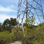 High tension powerline tower west of Dead Horse Creek