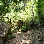 Walking along the Dead Horse Creek valley (446741)