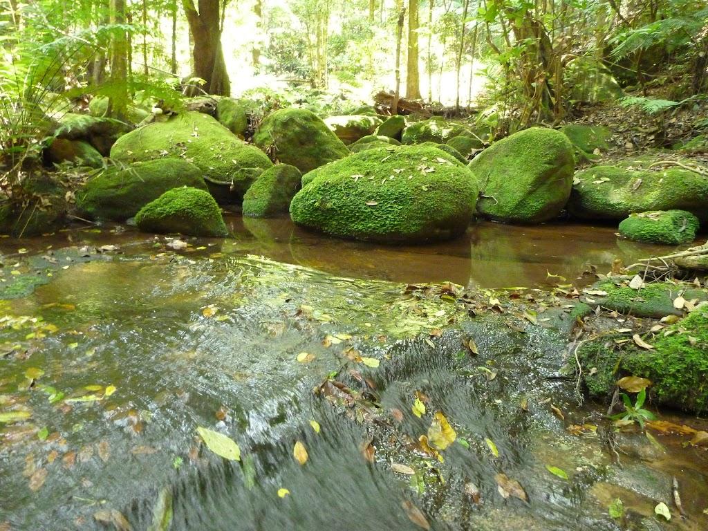 Dead Horse Creek (446843)