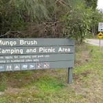 welcome to Mungo Brush