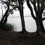View of Myall Lakes