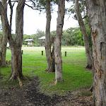 Looking across Dees Corner Campsite