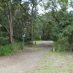 Road inside the campsite