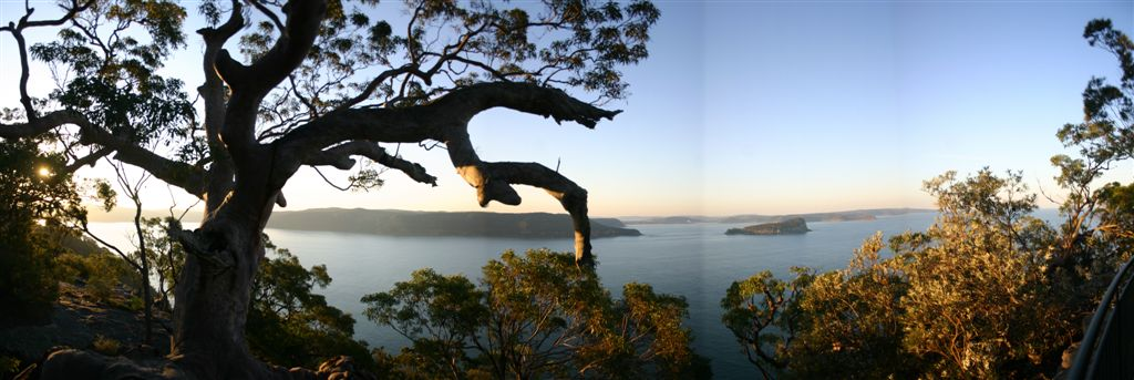 A panarama of from the lookout