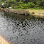 Creek at end of Kylies Road
