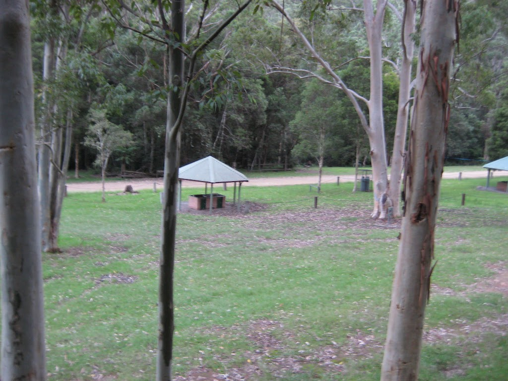 Gloucester River camping ground