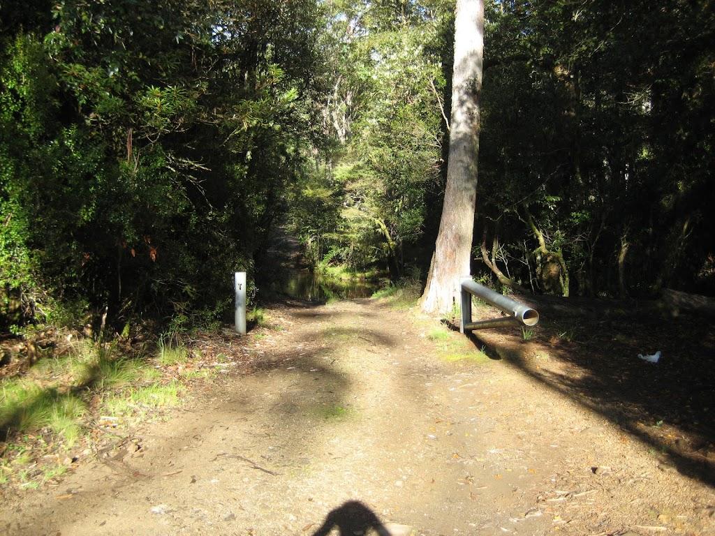 Road heading north