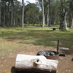 The are several fire pits in the campsite