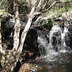 Creek nearby
