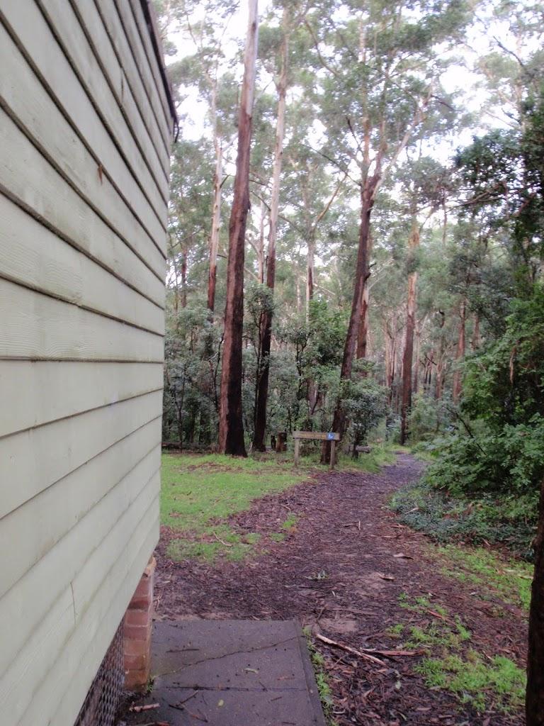 start of sheldon forest track