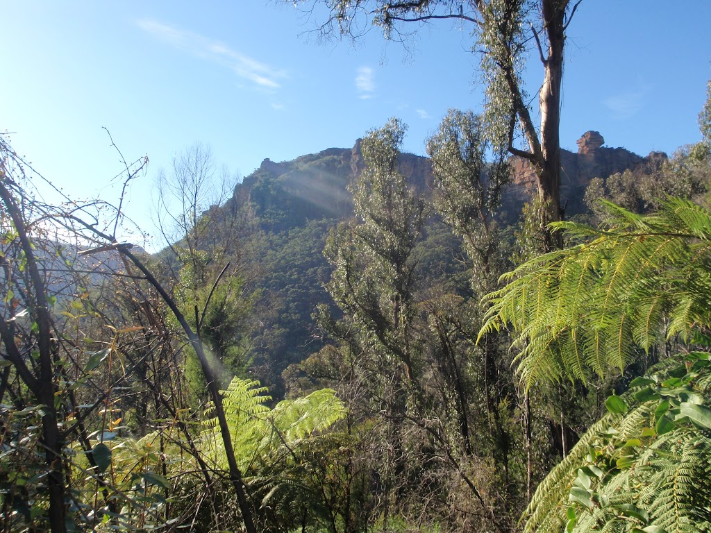 View from Grose Valley (49001)