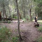 Burra Korain Flat Camping Area
