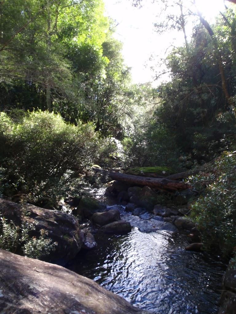 View below Victoria Cascades (50039)