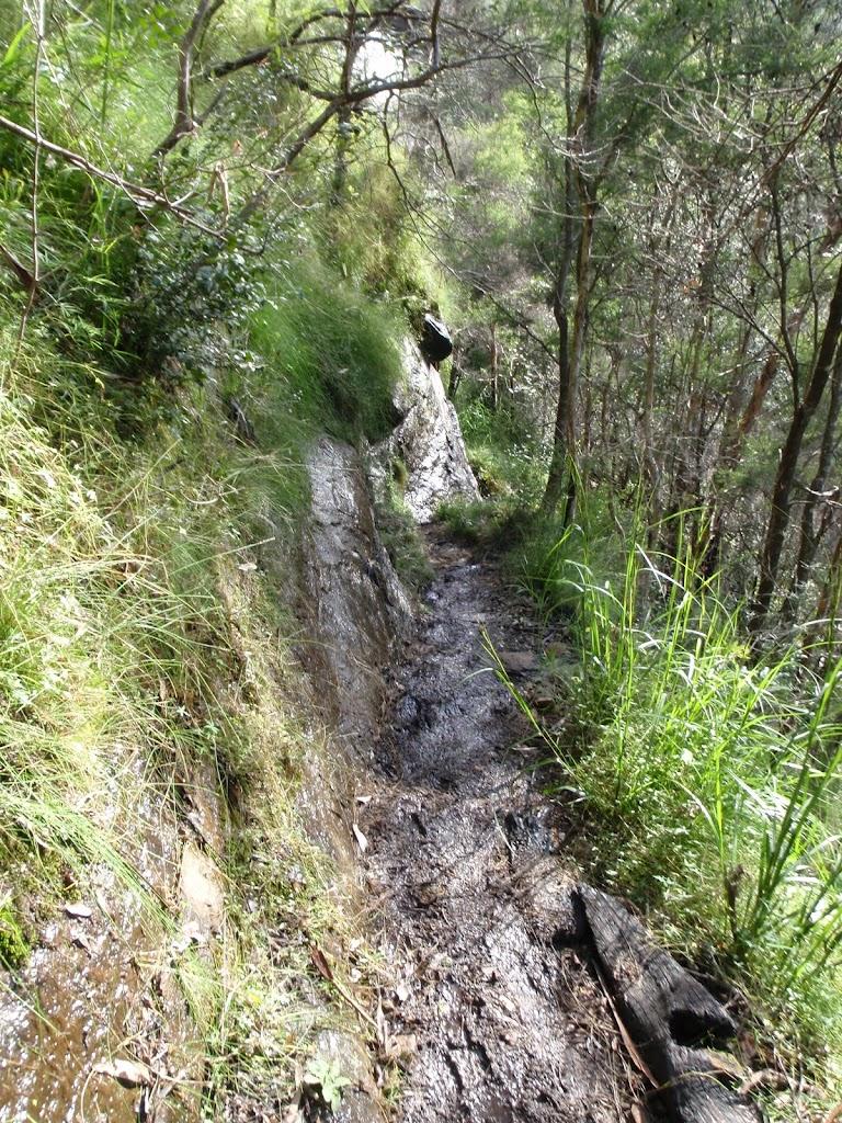 Track down to Victoria Falls