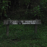 Blue Gum Forest sign