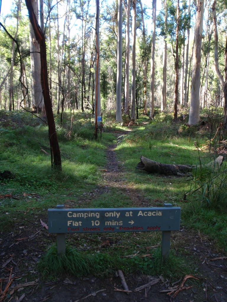 No Camping in Blue Gum Forest