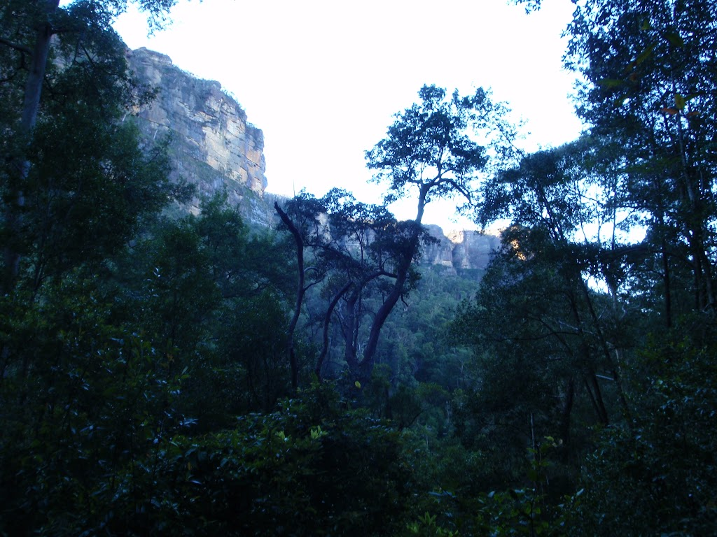 Cliff from the Grose Valley (51083)