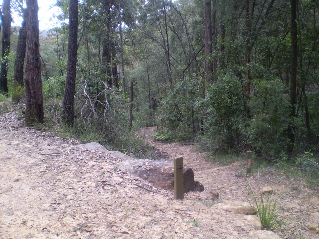 Int of Blue Gum and Joes Mountain Servicetrail (5125)