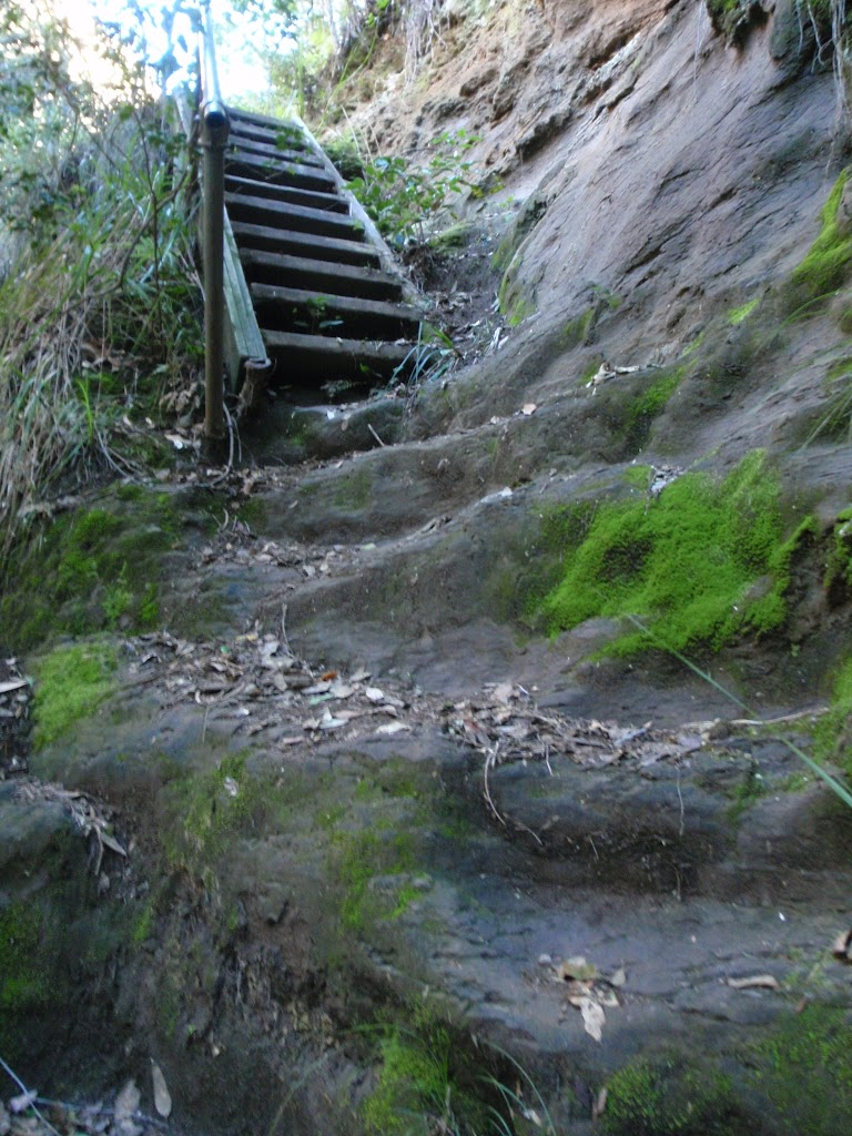 Stairs on Rodriguez Pass