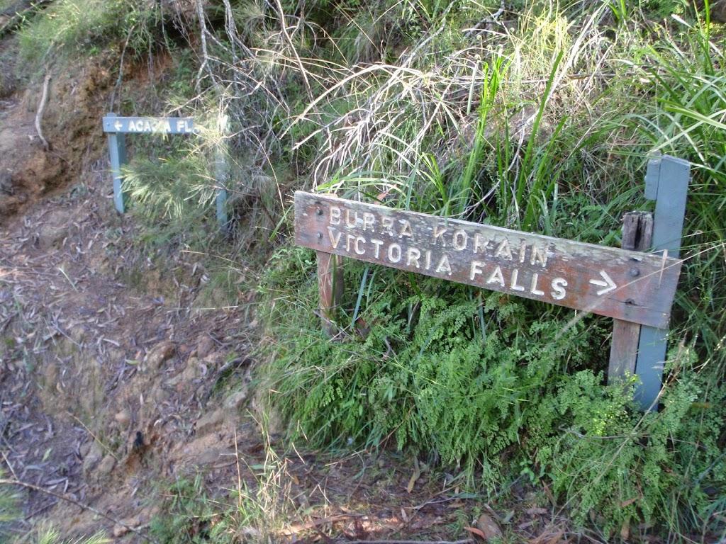 Signage on Grose River Track