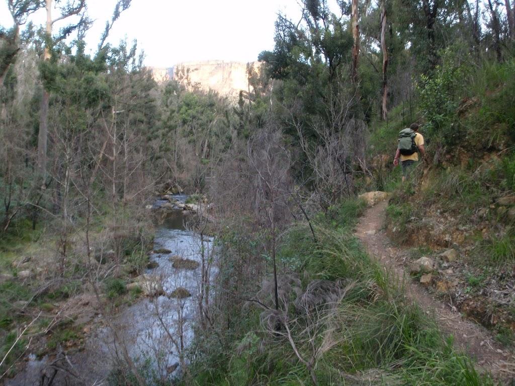 Track on hillside above Grose River