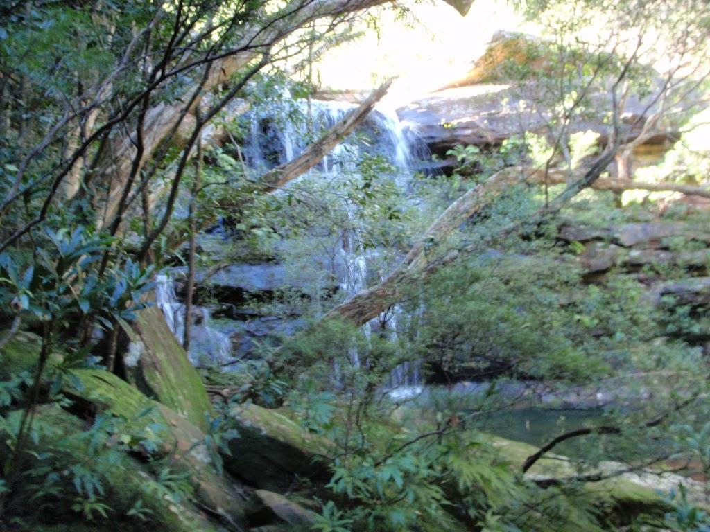 Kariong Brook