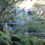 Kariong Brook (53159)