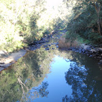 Piles Creek (53336)