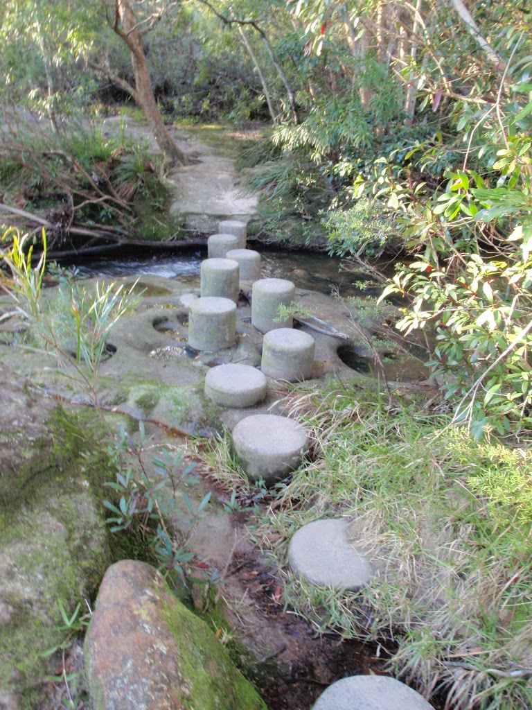 Piles Creek stepping stones (53339)