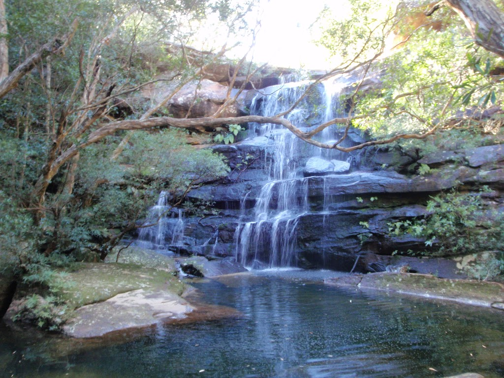 Kariong Brook Water fall (53357)