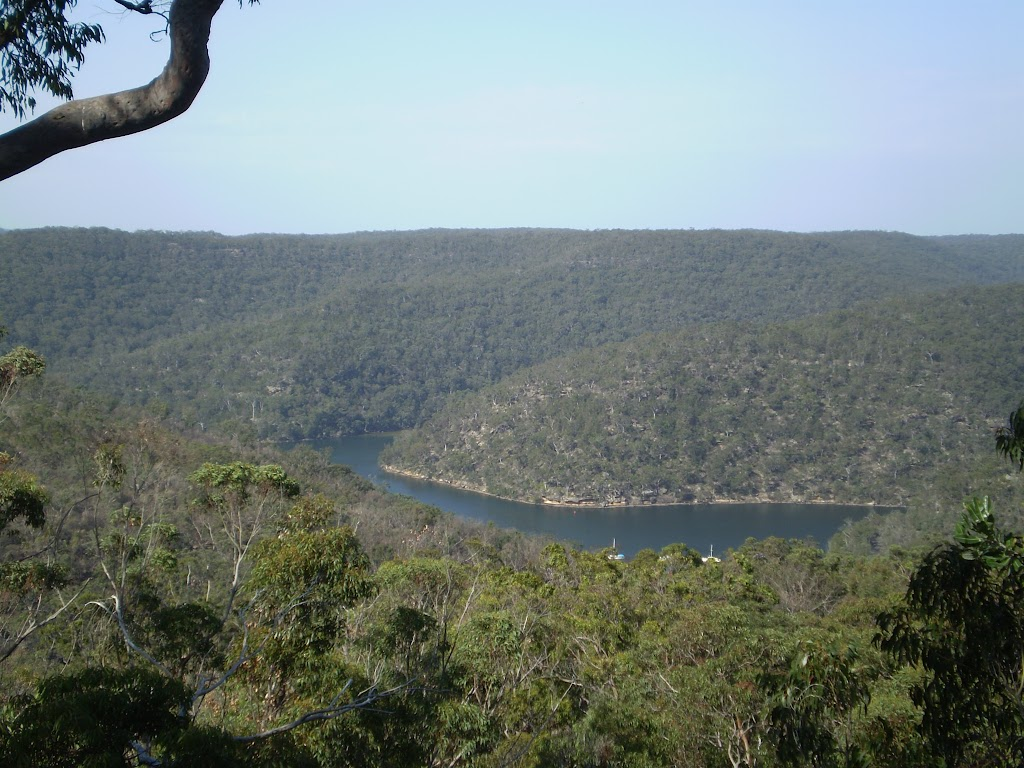 View from the Viewpoint off Mt Kuring-gai Track