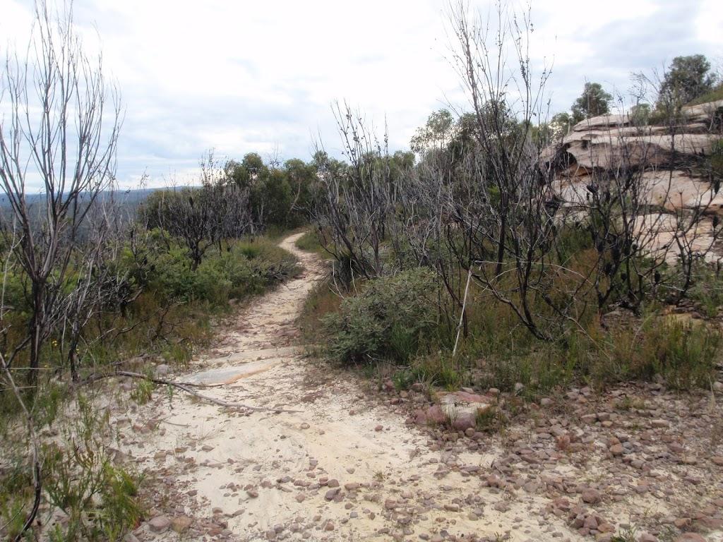 track north from Mt Wondabyne