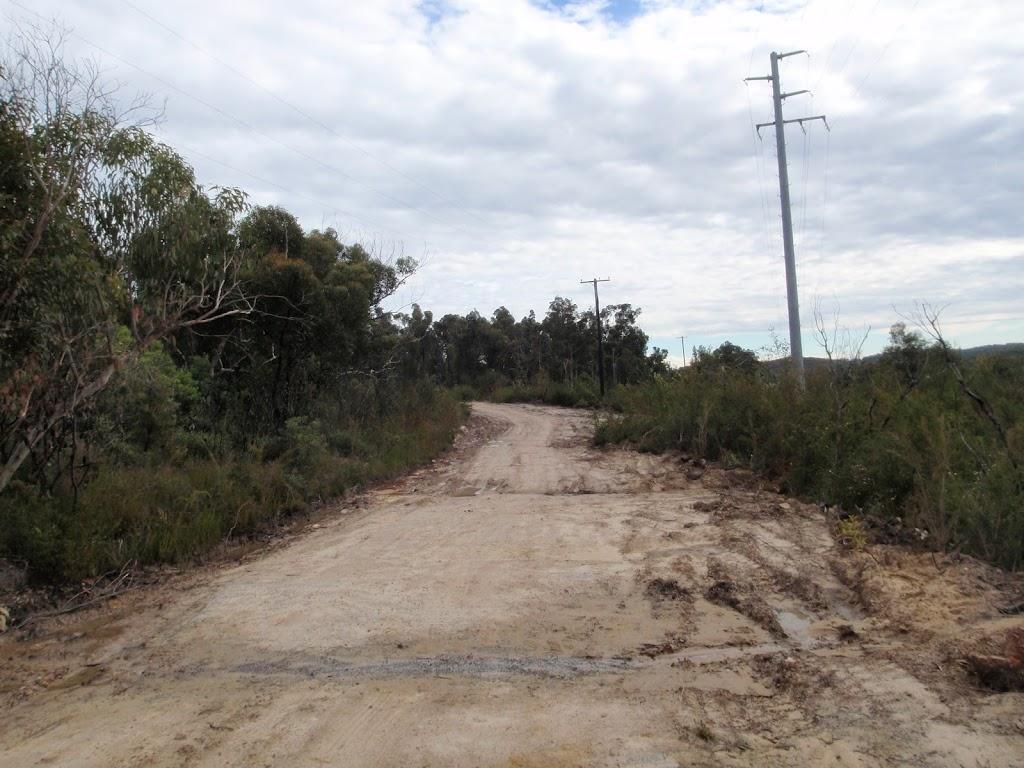 Mullet Creek trail
