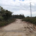 Mullet Creek trail (53789)