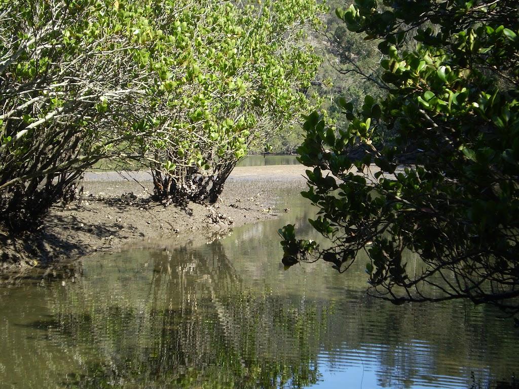 Cowan Creek