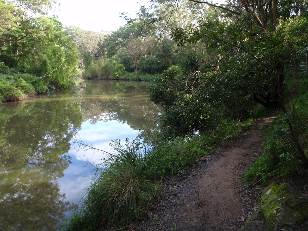 along the Lane Cove river