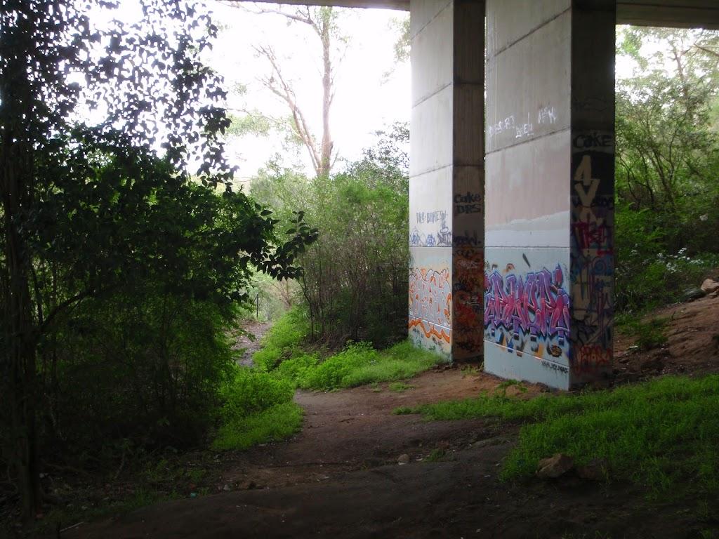 under de Burgs bridge (54737)