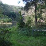 Fern Valley (54848)