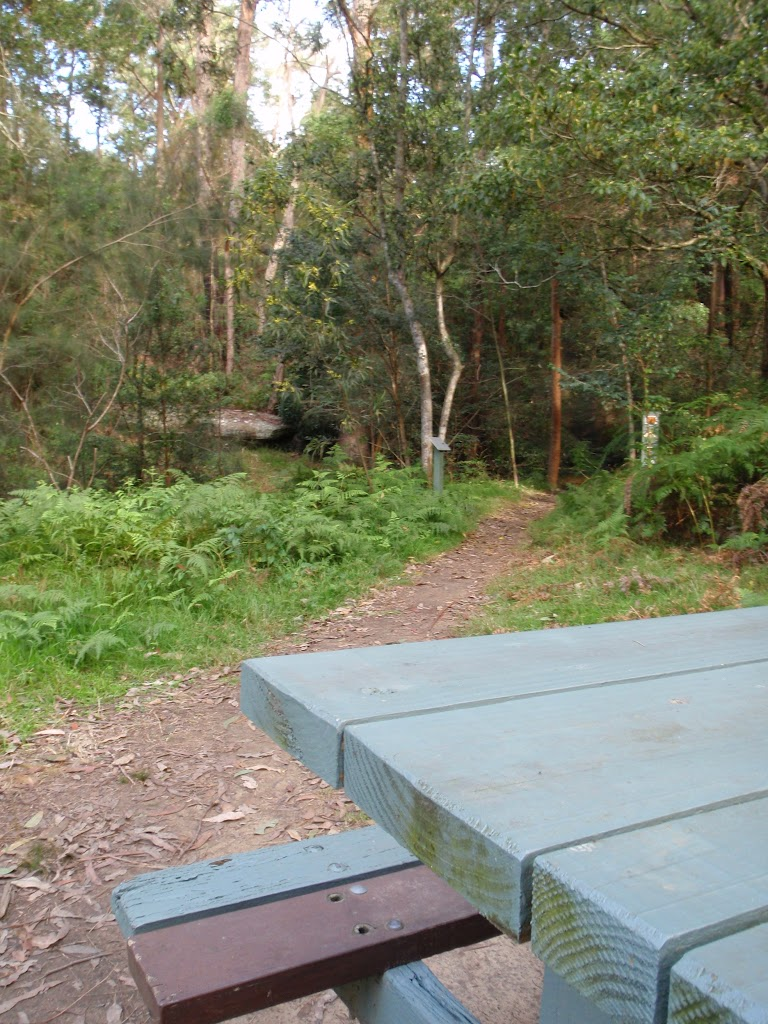 Picnic table along track (54851)