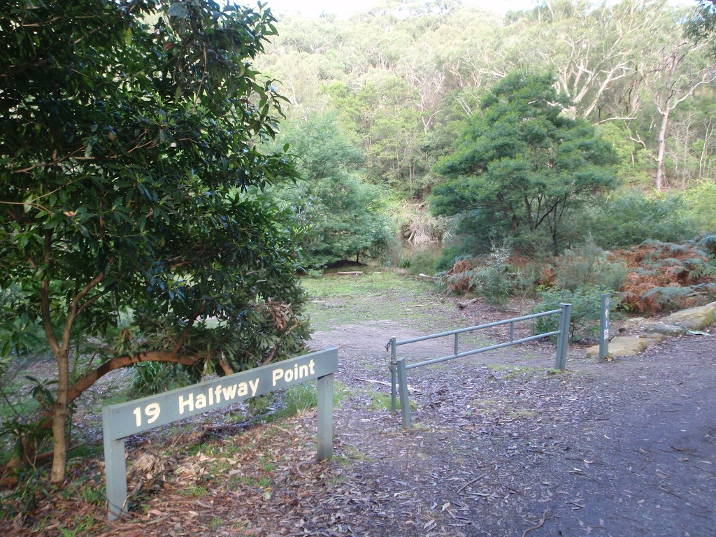 Halfway Point picnic area (54872)