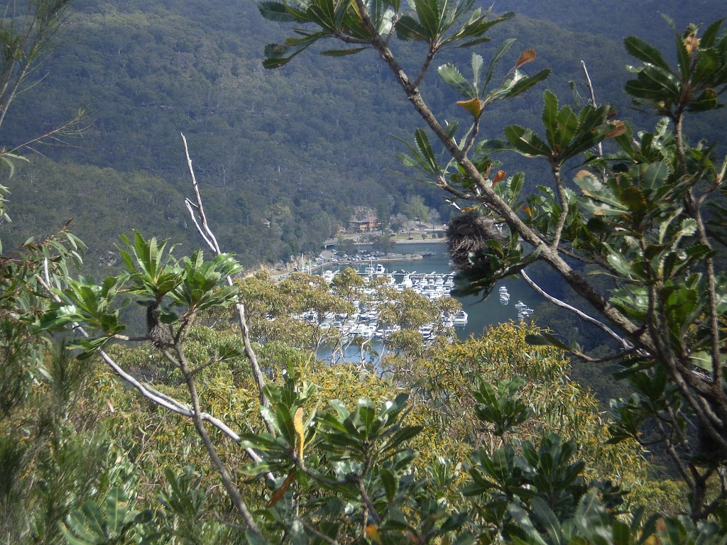 Looking at Bobbin Head from Slades Lookout (5492)