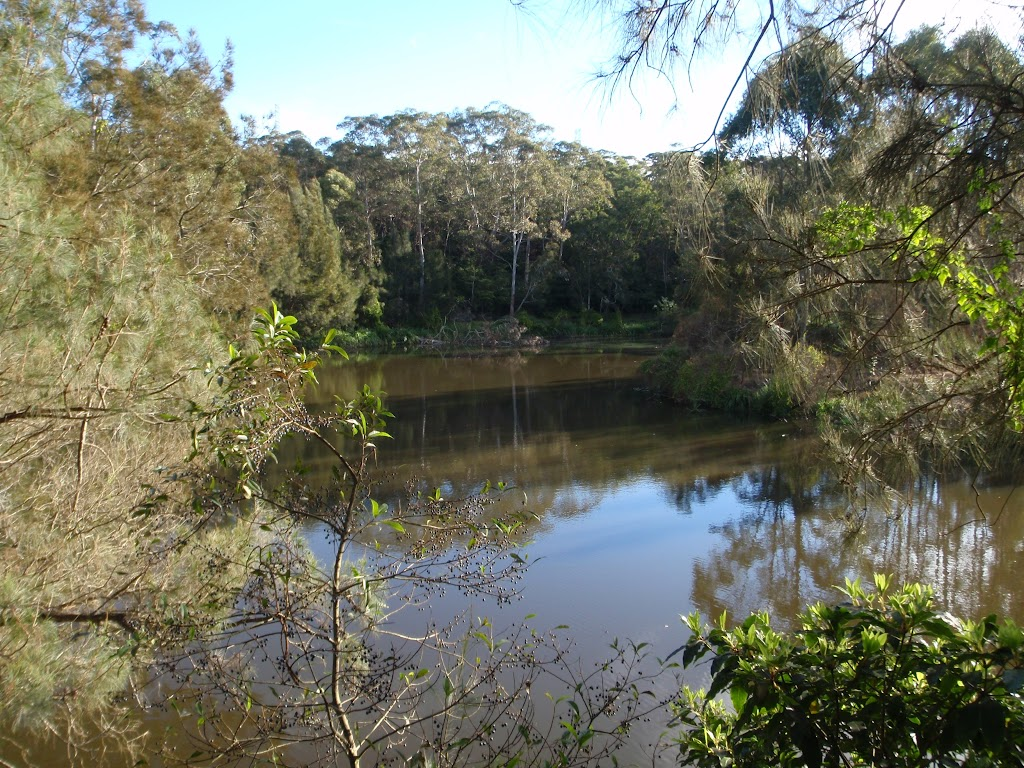 Lane Cove River (54944)
