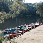 Boats outside the shed (54950)