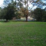 Grassy picnic area (54962)