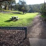 Riverside Walking Track